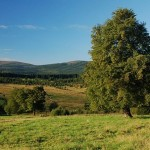 Sumava mountains scenery. We just love it! And hope you will love it too.